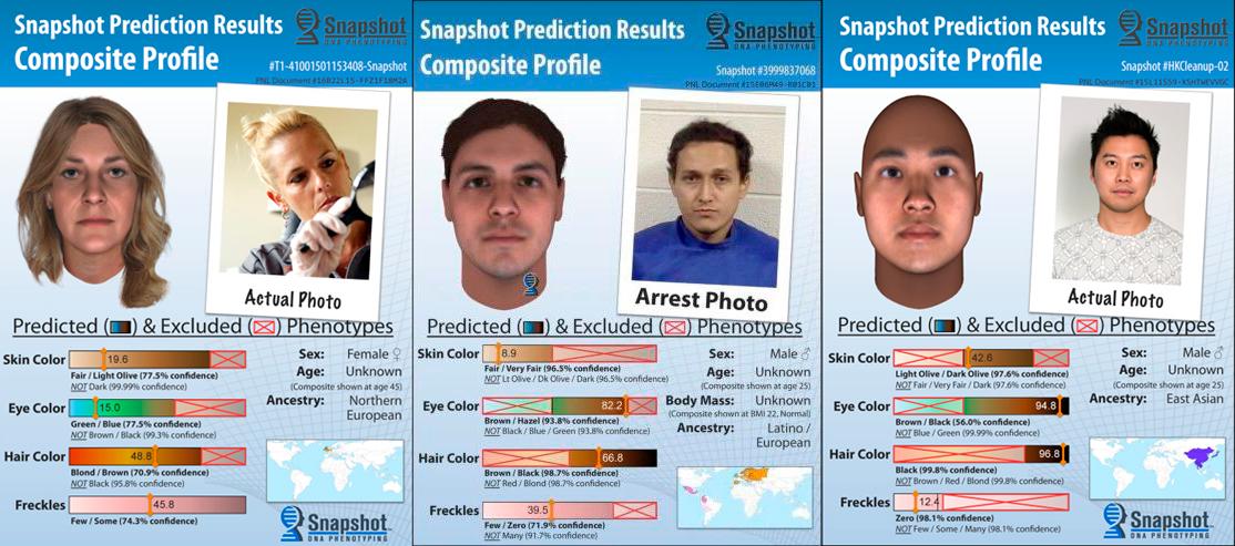 Новые ДНК-технологии создают цифровой портрет преступников